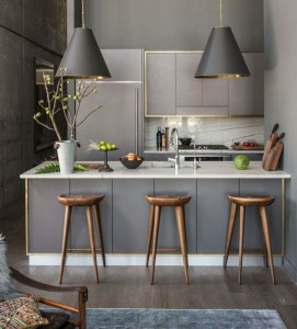 Choosing the kitchen furniture Functional Contemporary Kitchen Designs photo kitchen ideas gallery