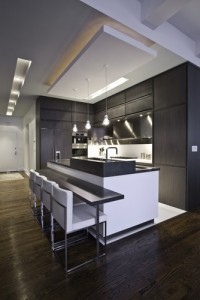 Contemporary mdern kitchens picture photo
