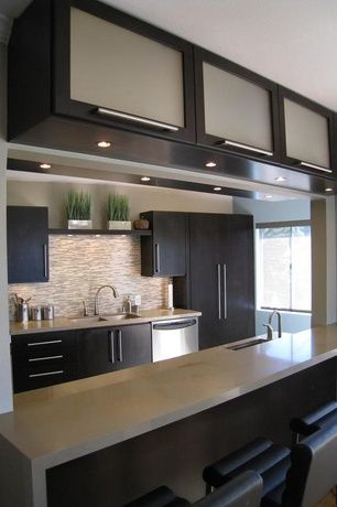 Top Contemporary Kitchen Design Ideas and Photos